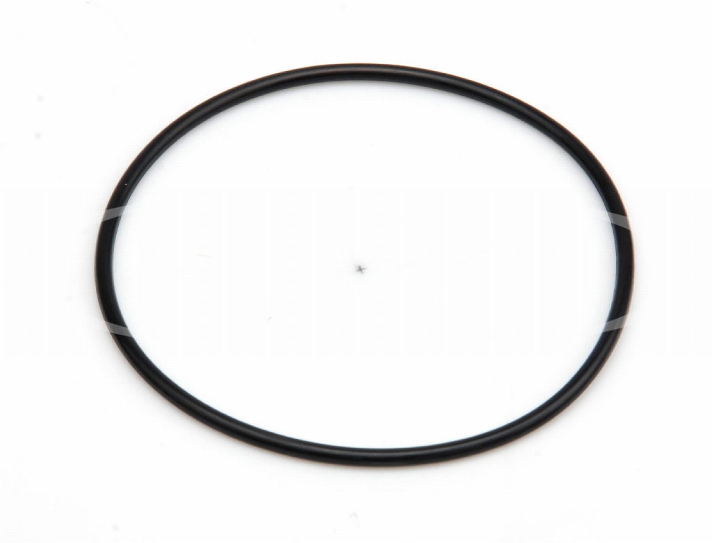 O-ring for Everpure filter